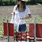 Rachel Bilson was in charge of all the baggies.