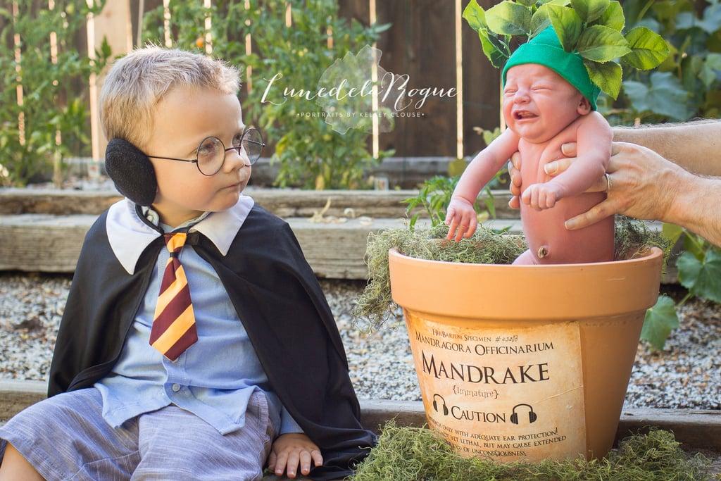 Harry Potter Newborn Photo Shoot Idea