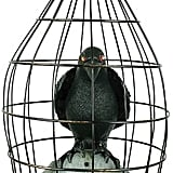 Animated Crow in a Cage