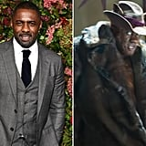 Idris Elba as Macavity
