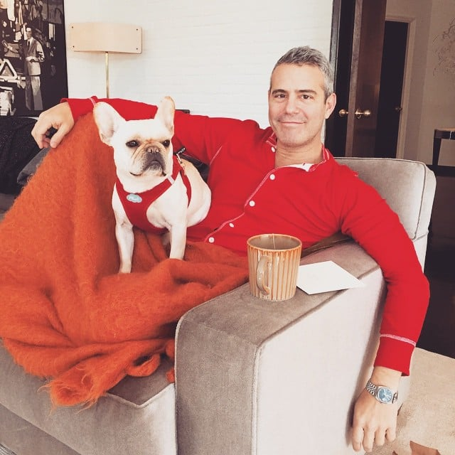 Andy Cohen snuggled up with his pup and a cup of tea.