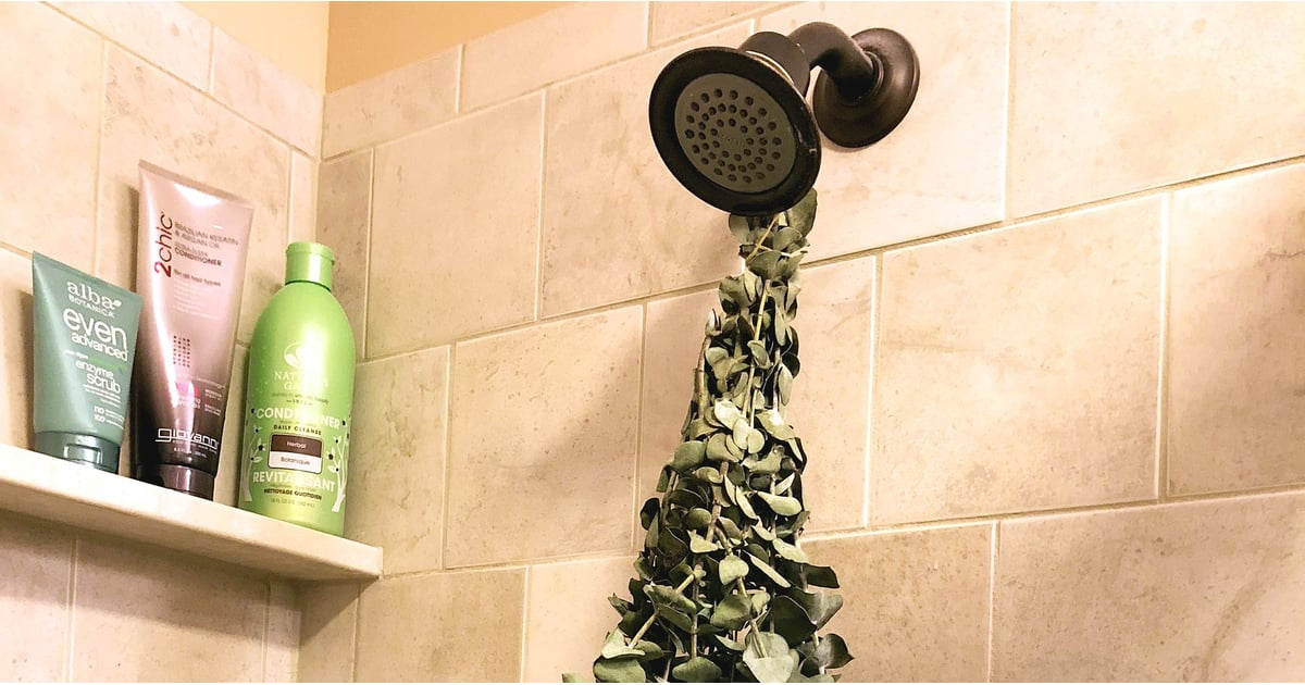 Hang Eucalyptus In The Shower Popsugar Fitness Uk