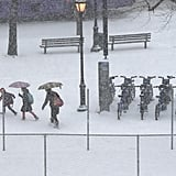 People carried umbrellas to block the wind and snow in NYC.
