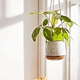 Speckled Ceramic Hanging Planter