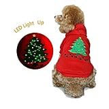 LED Holiday Doggie Sweater