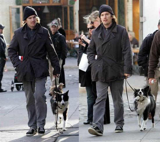 Ethan Hawke Walks His Dog