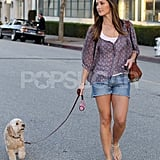 Minka Kelly Walks Her Adorable Dog on a Warm Day
