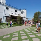 3 Surprising Realities of Visiting Magnolia Market in Real Life