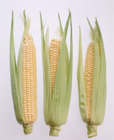 What's In Season: Corn