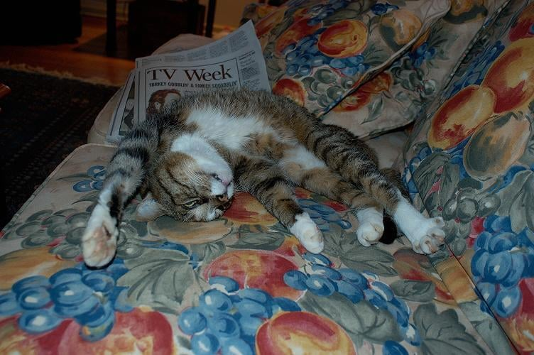 Find your own TV guide! Source: Flickr User petersbar