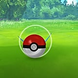 Throw the pokéball when the circle is the smallest.