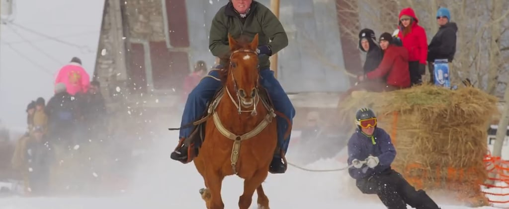 Skijoring Is the Winter Sport You Need This Season