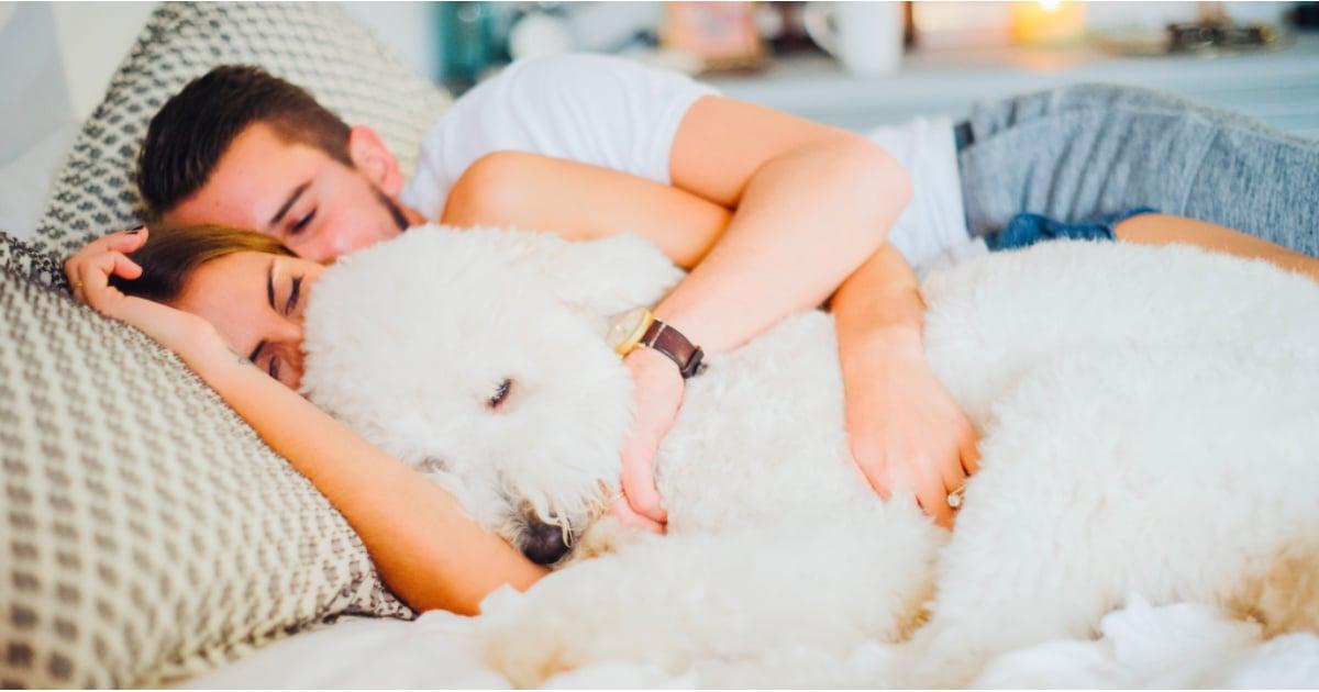 Ideal bedroom temperature for sleep popsugar fitness for Bedroom temperature