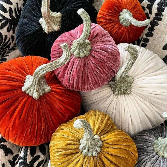 Velvet Halloween Pumpkins at HomeGoods | 2020