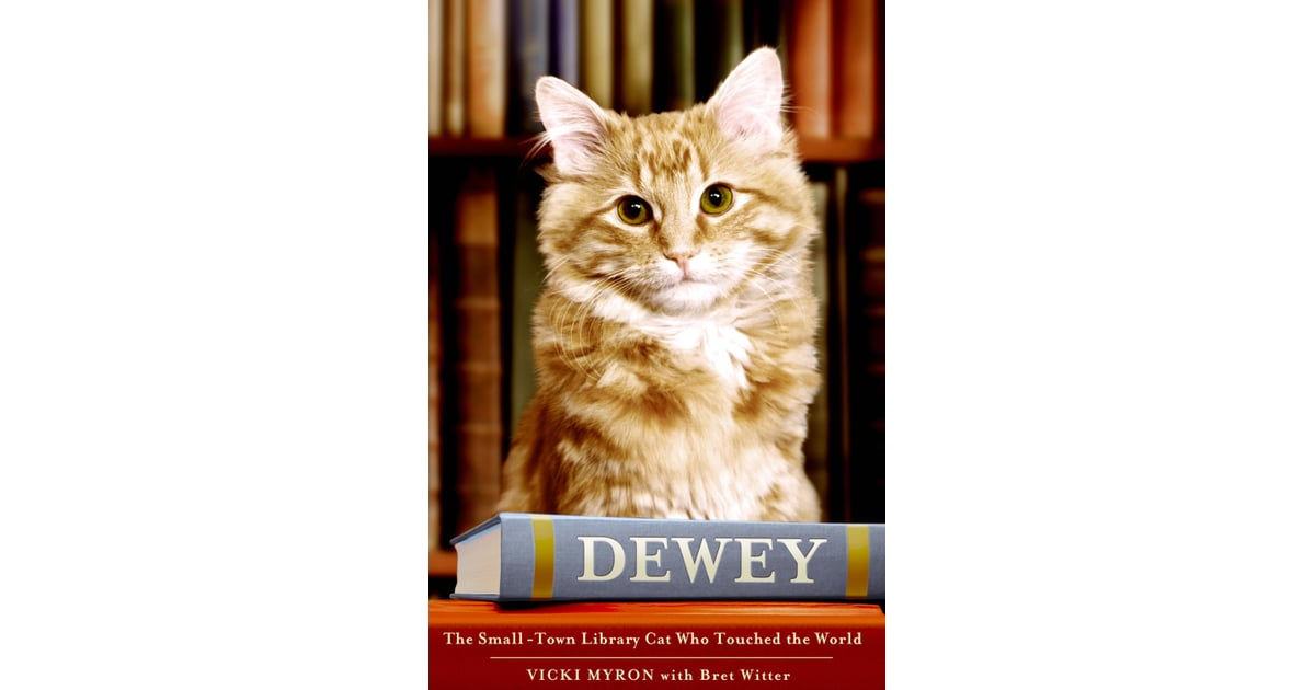 Best Auto Spencer Iowa >> Dewey by Vicki Myron | Books About Cats For Adults ...