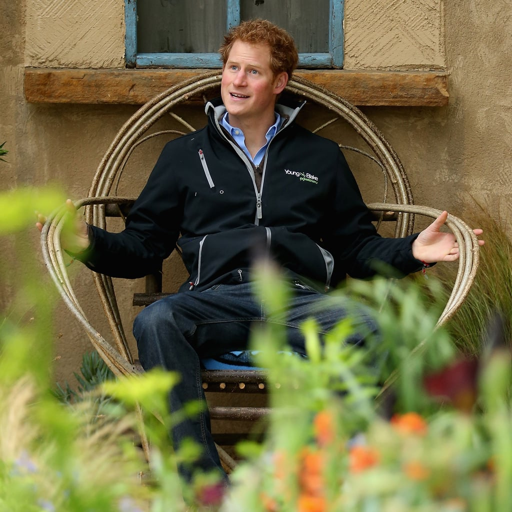 Pictures of the Royal Family at the Chelsea Flower Show