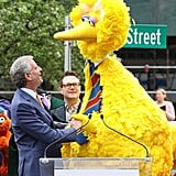 Sesame Street Becomes a Real Street in NYC