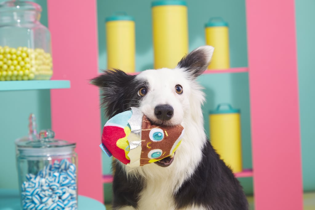 Best Treats and Toys For Dogs