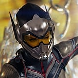 What Abilities Does the Wasp Have?