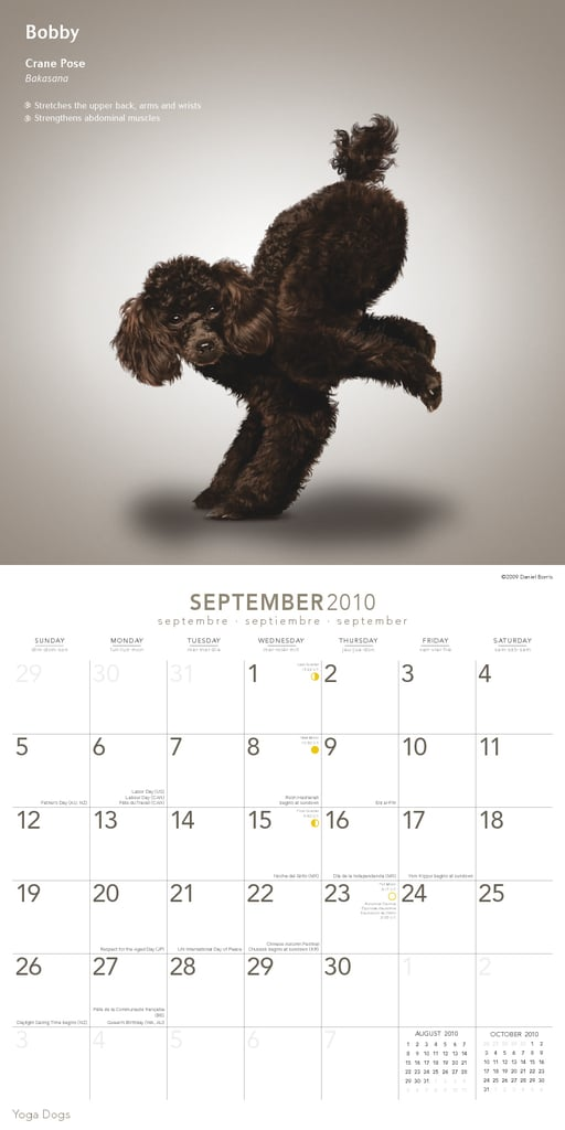 September — Crane Pose