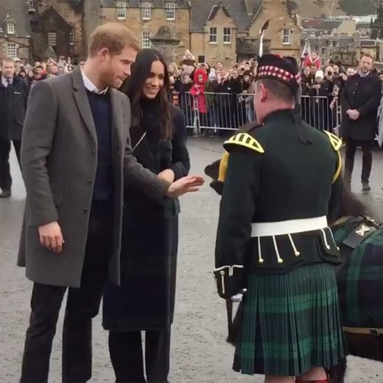 Prince Harry Being Bitten by Pony in Scotland Video