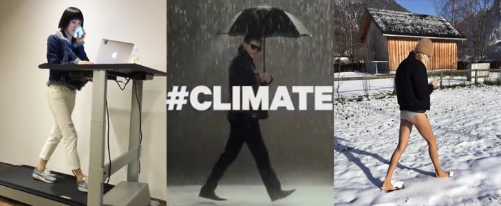 Climate Catwalk Instagrams