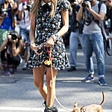 Anna Dello Russo's ultimate accessory? Her adorable pooch.