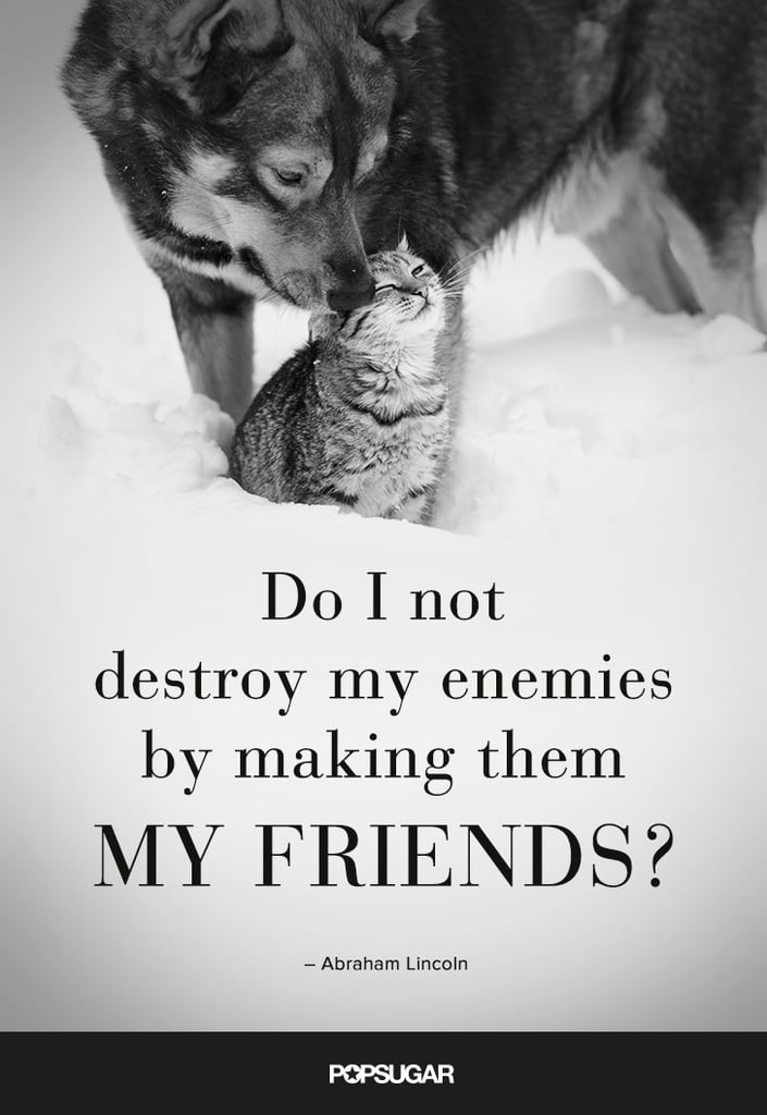 Befriend Your Enemies Life Changing Inspirational Quotes