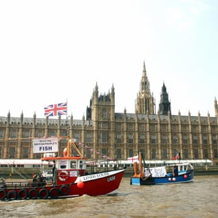 London Hopes to Become First City to Source All Fish Sustainably