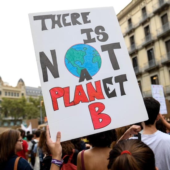 How Ecofeminism Can Help Combat Climate Change