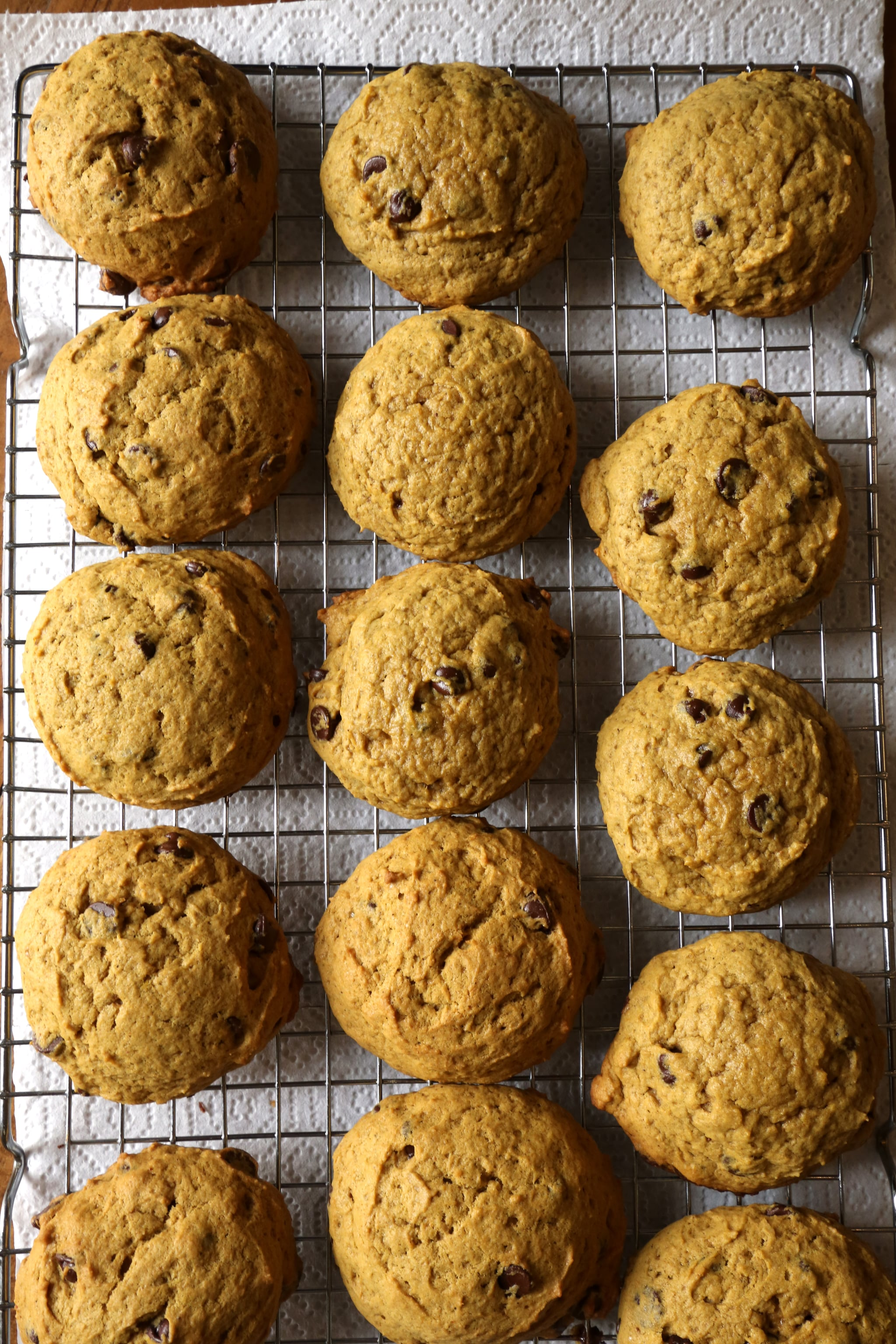 Pumpkin Chocolate Chip Cookie Recipe | POPSUGAR Food