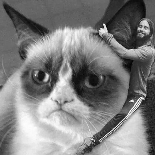 Jared Hugging Grumpy Cat