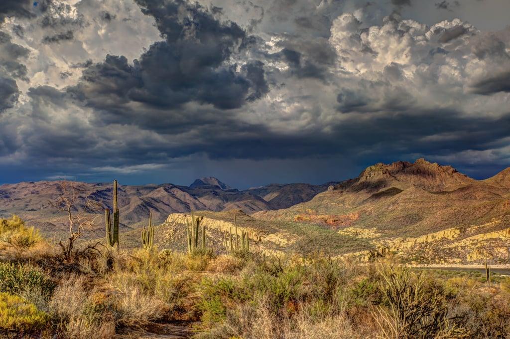 2. Williams, Arizona