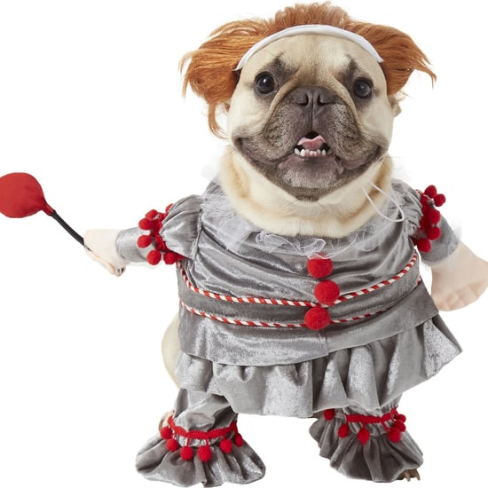 This Pennywise Dog Halloween Costume Is Too Cute to Be Scary