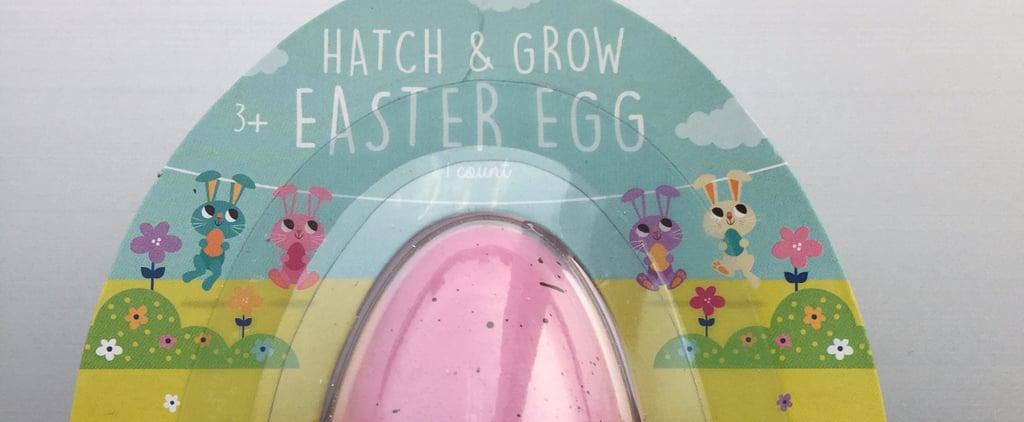 Recall Alert! Target's Dollar Spot Easter and Dino Toys Pose Dangerous Hazard