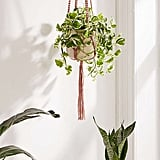 Urban Outfitters Serena Ombre Macrame Hanging Planter