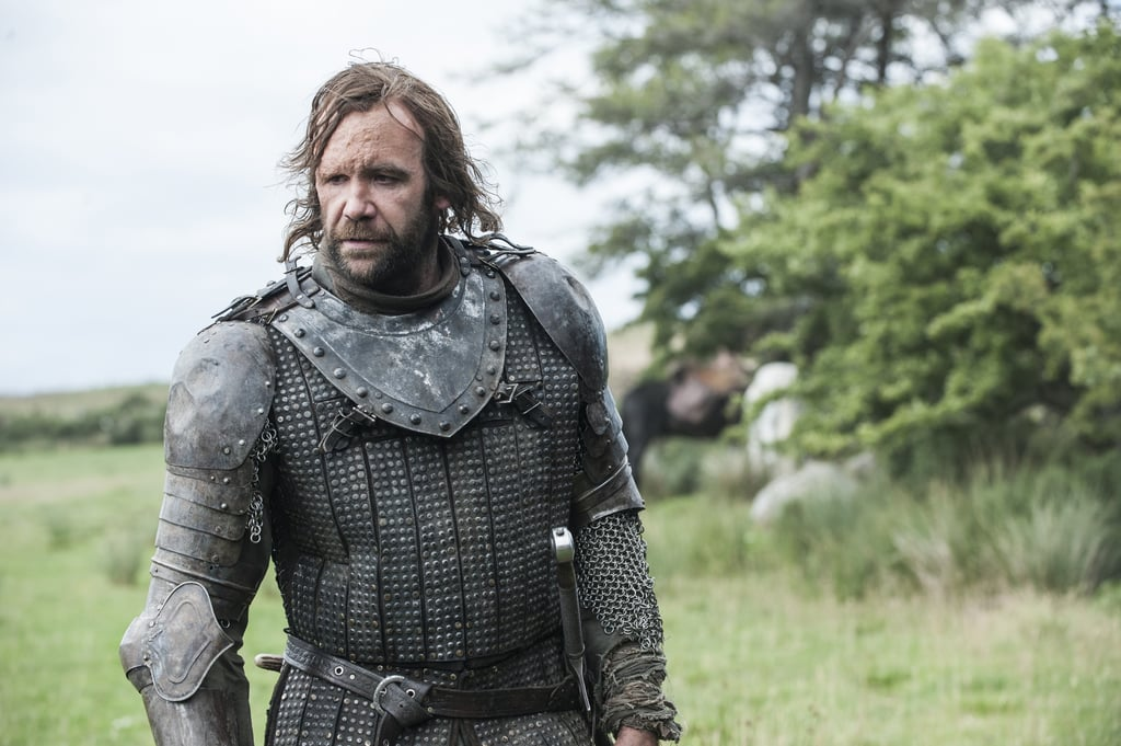 The Hound From Game of Thrones