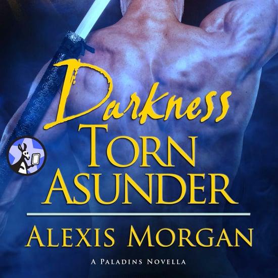Darkness Torn Asunder by Alexis Morgan Book Excerpt