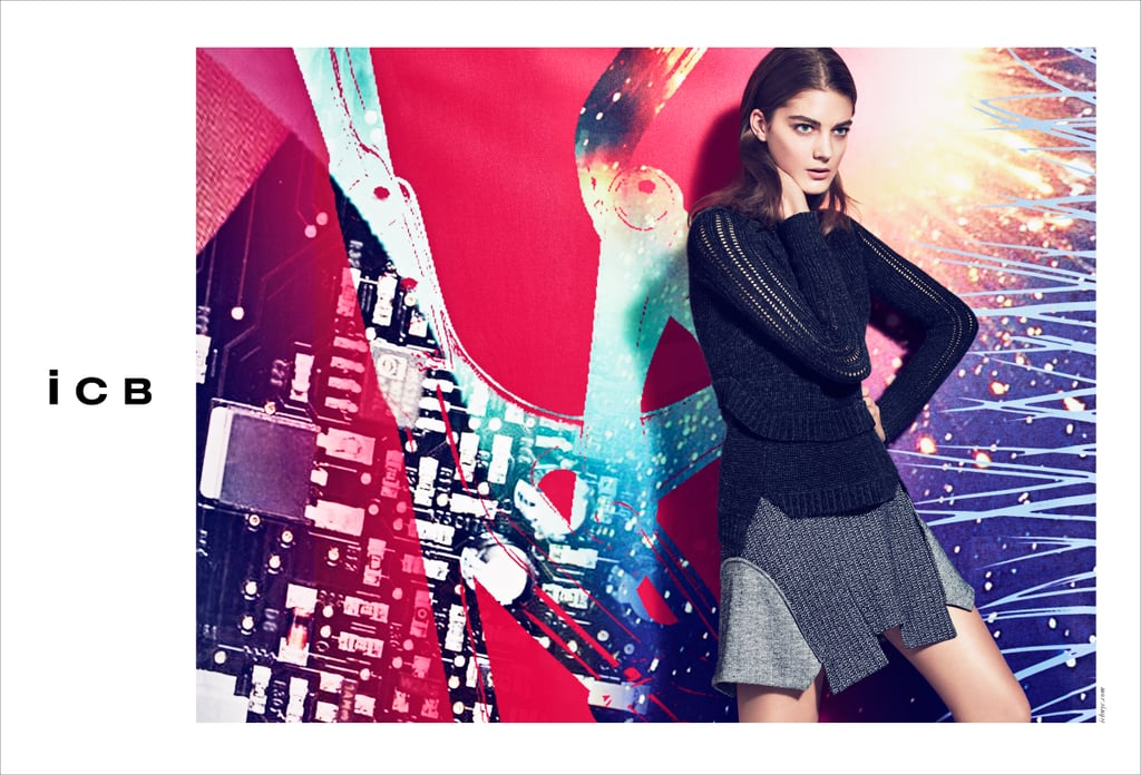 ICB Fall 2012 Ad Campaign