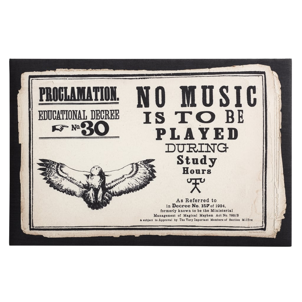 Educational Decree Proclamation Pin Board ($99)