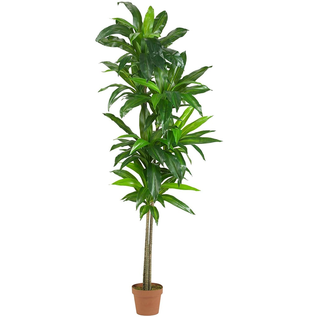 Nearly Natural Real Touch Dracaena Silk Plant