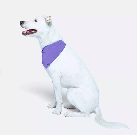 Score your very own MeUndies BuddyBand ($14, $10 for members) so you can match your pup during your next cuddle session.