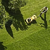 Mow Lawns