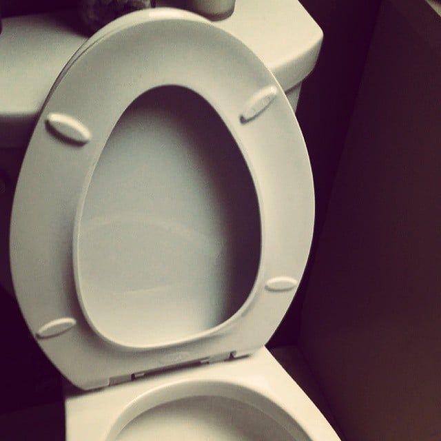 All the Toilet Seats Are Upright