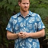 Prince Harry and Prince Charles Lookalike Beard Photos