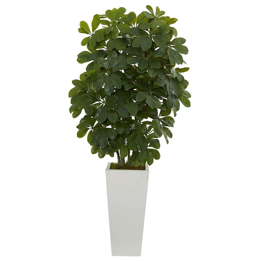 Nearly Natural Artificial Schefflera Plant