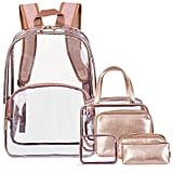 NiceEbag 6 -in-1 Clear Backpack with Cosmetic Bag & Case