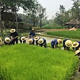 Experience the culture of Northern Thailand by getting hands on.
