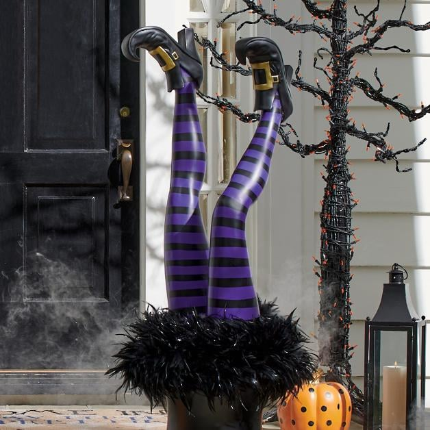 Purple Witch Leg Stakes