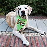 Have a Pawsome Christmas Dog Bandana ($12)